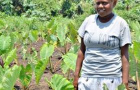 Shanine-Vanuatu.jpg