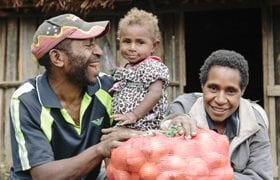 Onion-Harvest-Papua-New-Guinea