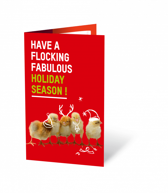 Christmas-flock-of-chickens-oxfam-nz