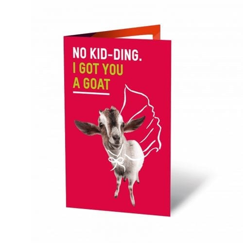 Goat No Kid-ding Unwrapped