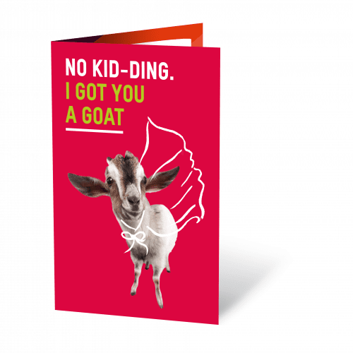 goat-no-kid-ding-oxfam-nz