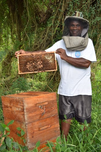 christmas-honey-bees-oxfam-nz