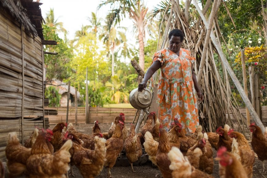 Bertha with the chickens she raises with support from Oxfam's livelihoods project in Vanuatu.
