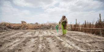 Global Report On Food Crisis 'Grim'